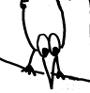 Les Drôles d'oiseaux